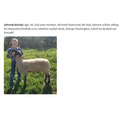 Schultz, Johnnie - Market Lamb