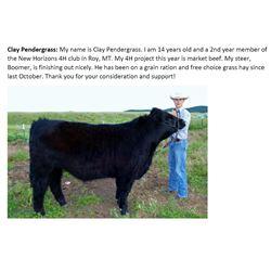 Pendergrass, Clay - Market Beef