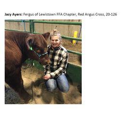 Ayers, Jacy - Market Beef