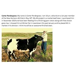 Pendergrass, Carter - Market Beef