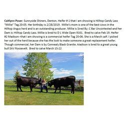 Poser, Caitlynn - Market Heifer