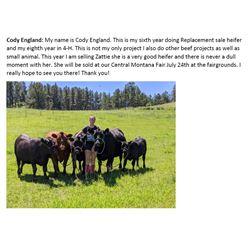 England, Cody - Market Heifer