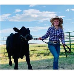 Kora LaBrie - Beef - Weight: 1310