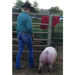 Sidney Meeks - Swine - Weight: 260