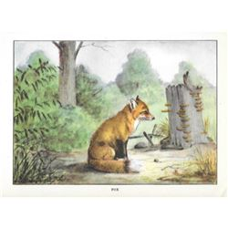 1920's Fox Color Lithograph Print