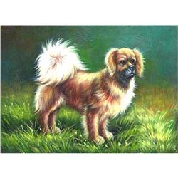 Tibetan Spaniel, Small Dog Oil Painting
