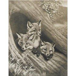 Vintage c1920's Half-tone Print, #1062 Little Foxes