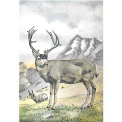 1920's Mule Deer Color Lithograph Print
