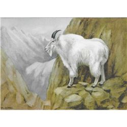 1920's Mountain Goat Color Lithograph Print