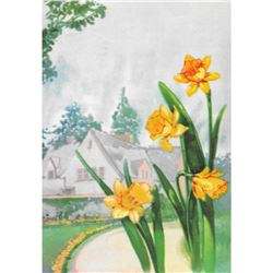 Daffodil 1920's Color Lithograph Print
