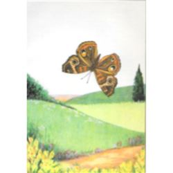 1920's Buckeye Butterfly Color Lithograph Print