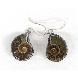 Ammonite Fossils in Sterling Silver Earrings