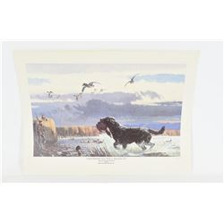 Lot of Collectable Prints