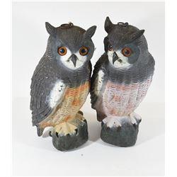 Two Owl Decoys