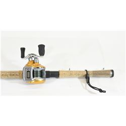 Fenwick Eagle Rod and Daiwa Accudepth Reel