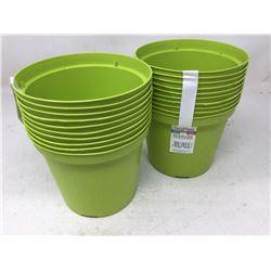 Lot of Tera Plant Plant Pots