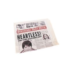 Once Upon a Time - Storybrooke Daily Mirror Prop (3217)