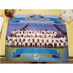 TORONTO BLUE JAYS WORLD CHAMPIONSHIPS 1993