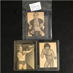 1973 WRESTLING ANNUAL CARD LOT