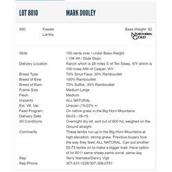 Mark Dooley - 500 Feeders Lambs