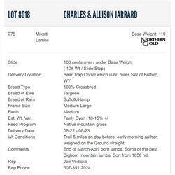 Charles & Allison Jarrard - 975 Mixeds Lambs