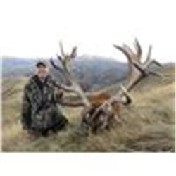 """NEW ZEALAND 5 DAY Combo RED STAG ( Up  to 370"""") AND CHAMOIS included"""