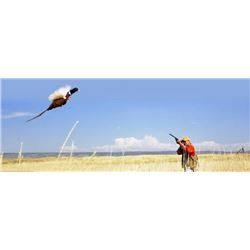 Premium SD NWTF Pheasant hunt for up to 2 hunters (Lodging and Meals included)