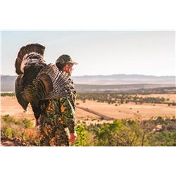 Goulds Turkey Hunt for 1 with El Halcon one of Mexico's premier hunting destinations