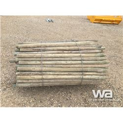 140 3-4  TREATED FENCE POSTS
