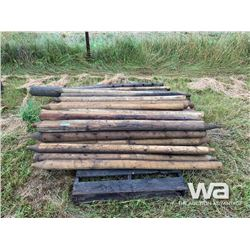 (40) TREATED FENCE POSTS