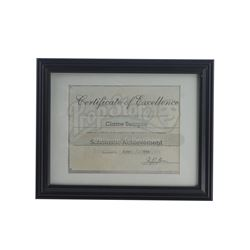 Marvel's Luke Cage (TV Series) - Claire Temple's Framed Certificate of Excellence
