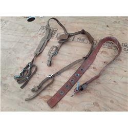 1715B___Tool Belt Harness & Belt