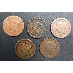 5-LARGE CENTS: 1831, 1847, 1850, 1851, 1854