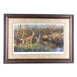 Whitetail Creek Bruce Miller Print
