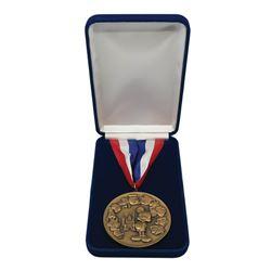 Disneyland Creativity Challenge Medal.