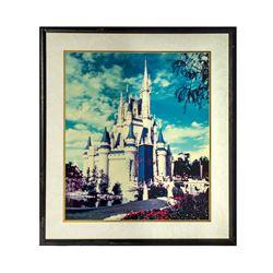 Cinderella Castle Framed Photo Print.