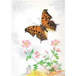 1920's Violet Tip Butterfly Color Lithograph Print