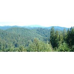 Weyerhaeuser Recreational Access Permit