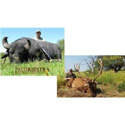 Hunt Package - Red Stag or Water Buffalo - Argentina