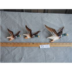 3 Wall Hanging Duck Ornaments