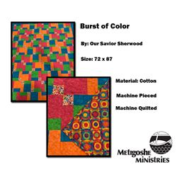 Burst of Color Quilt