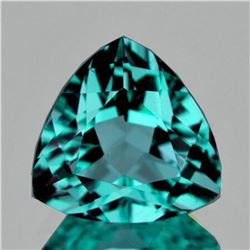 Natural AAA Fire Paraiba Green Blue Apatite - FL