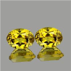 Natural Golden Yellow Beryl Heliodoor Pair 9x7 MM - FL