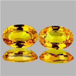 Natural Golden Yellow Sapphire Pair 6x4 MM - VVS