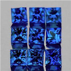 Natural Royal Blue Sapphire 12 Pcs [VVS]