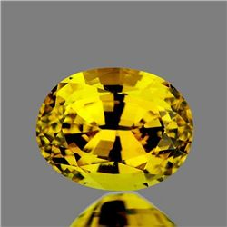 Natural Brilliant Golden Yellow Zircon [Flawless-VVS]