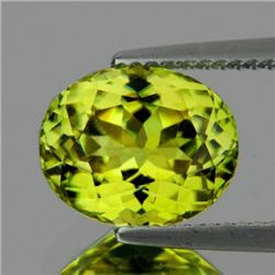 Natural AAA Canary Yellow Mali Garnet (Flawless-VVS1)