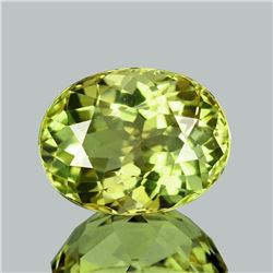 Natural Canary Yellow Tourmaline  Flawless