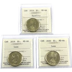 2019 Canada $1 Equality, 2019 $1 Loon & 2020 $1 Loon ICCS Certified MS-66. 3pcs