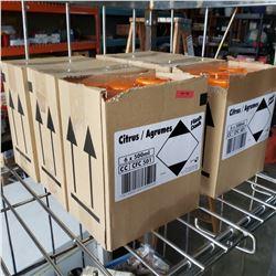 6 BOXES OF NEW CITRUS SPLASH DASH CLEANER